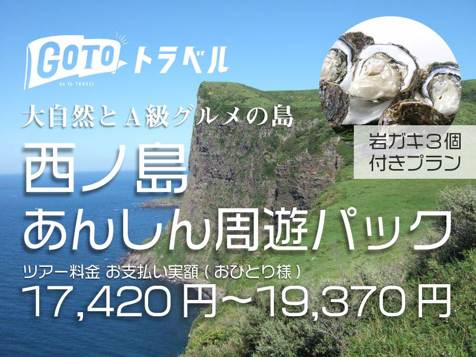 西ノ島安心周遊パック(GoTo対応)